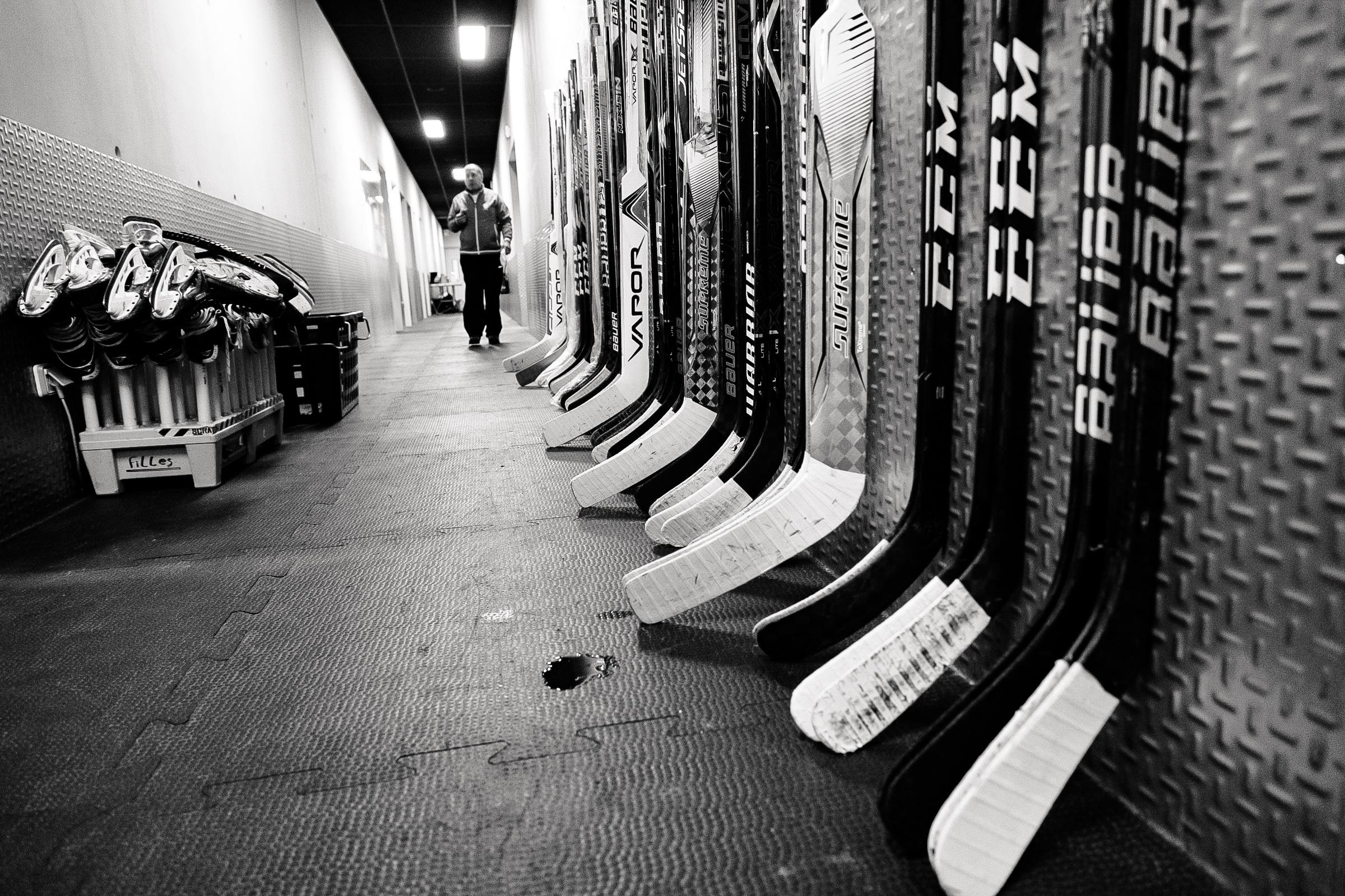 Une saison pleine de promesses pour l'équipe de France féminine de hockey sur glace.